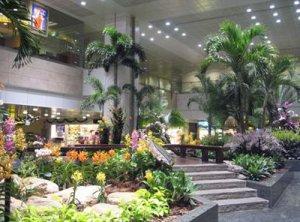 ChangiSingapore