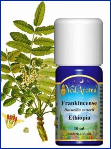 frankincense-ethiopia-essential-oil