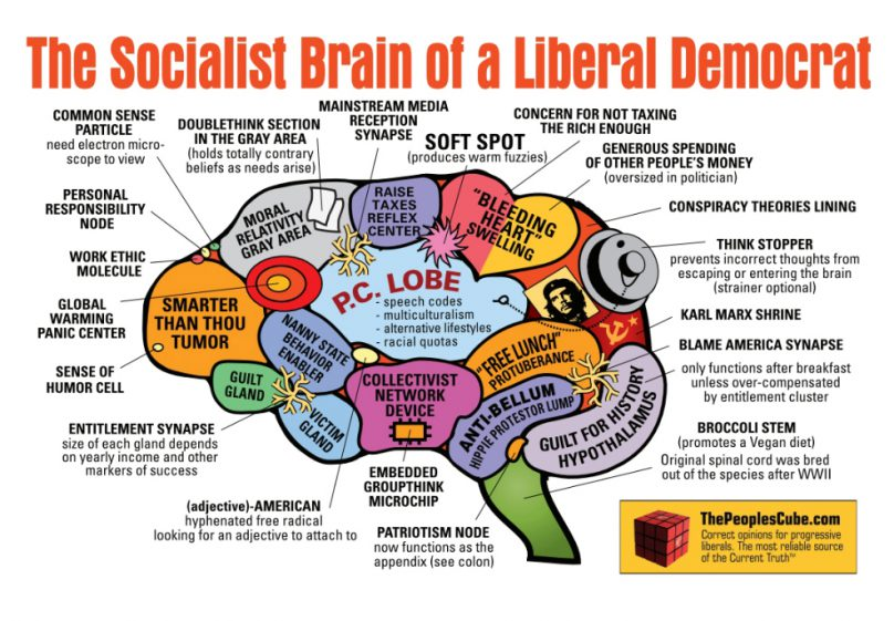 socialist-brain