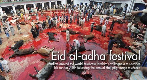 eid-al-adha-slaughter-capture-620x336